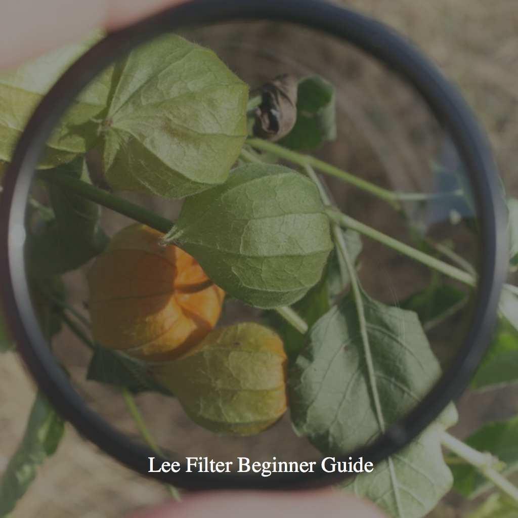 Lee Filter Beginner Guide